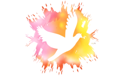 Pentecost Vigil and Confirmation